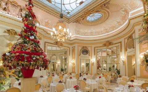 How 5 Luxury Hotels Are Celebrating The Holidays luxury hotels How 5 Luxury Hotels Are Celebrating The Holidays Christmas inside The Palm Court2 480x300