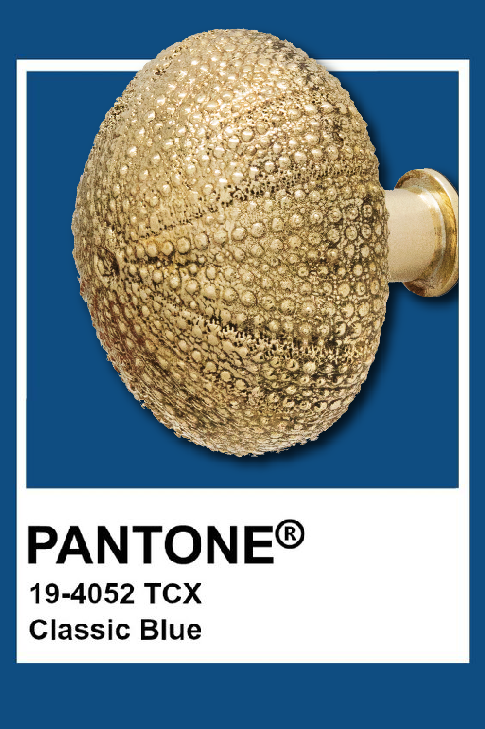 Pantone Color of The Year: PullCast Edition pantone color of the year 2020 Pantone Color of The Year 2020: PullCast Edition Patones Pullcast 01 e1576078197198