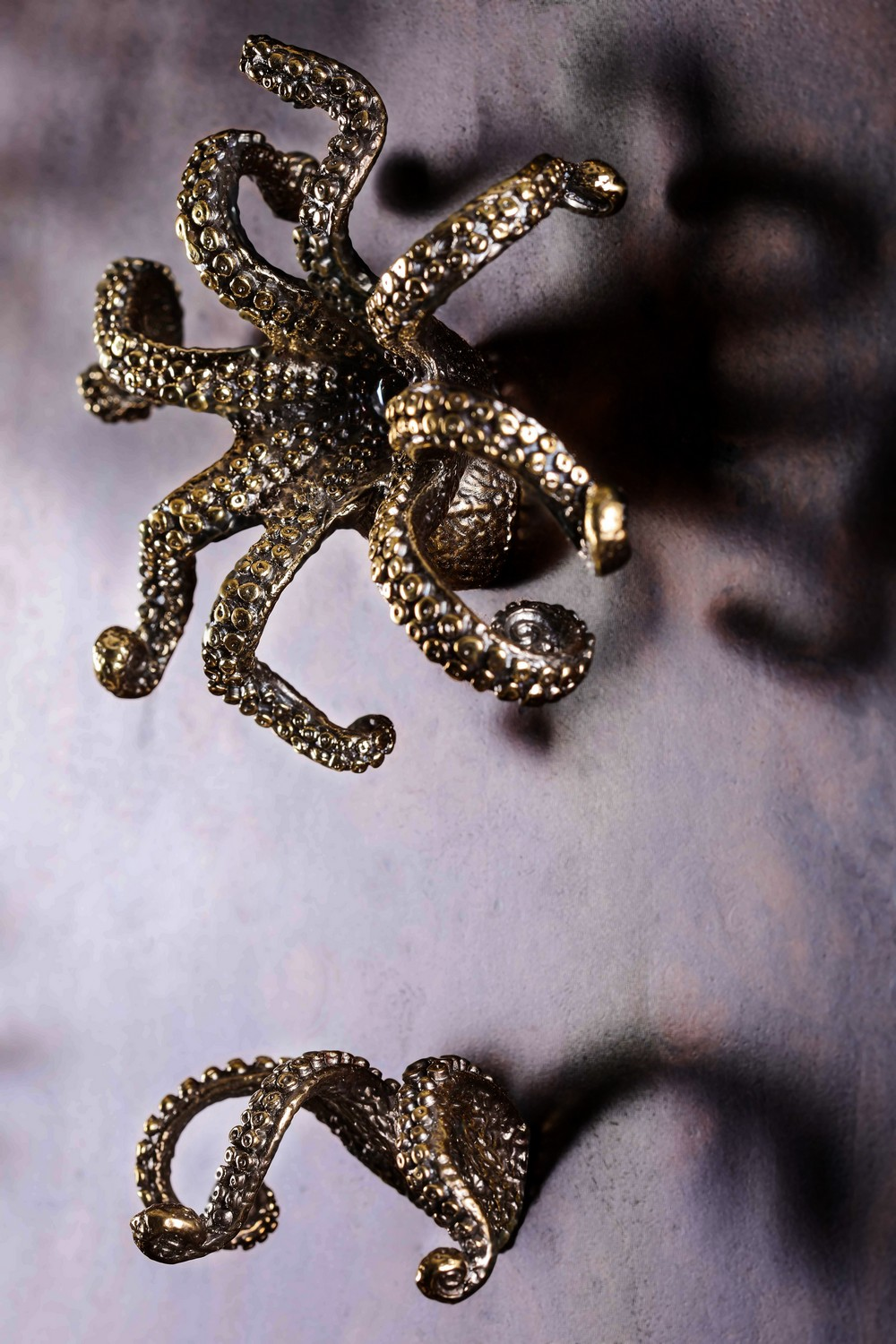 Sea Creature-Inspired Decorative Hardware for a Home Decor Freshen Up 1 decorative hardware Sea Creature-Inspired Decorative Hardware for a Home Decor Freshen Up Sea Creature Inspired Decorative Hardware for a Home Decor Freshen Up 1